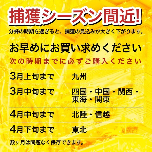 ニホンミツバチの蜜蝋 【80g】|syumatsu-yoho|04
