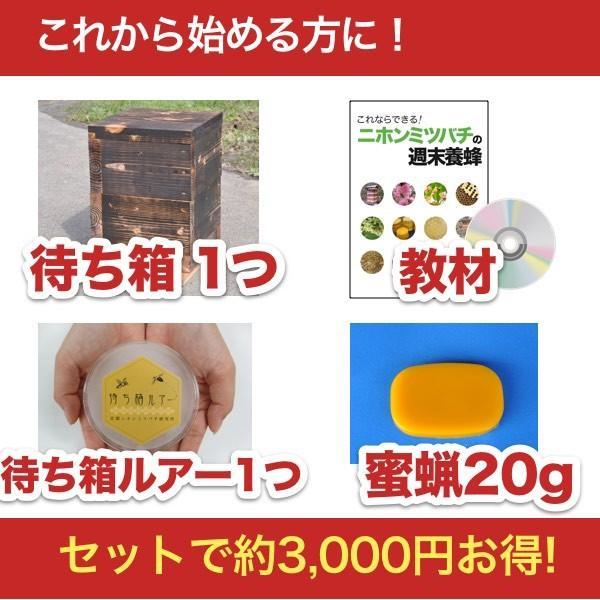 待ち箱ルアーで始める!週末養蜂スタートキット|syumatsu-yoho