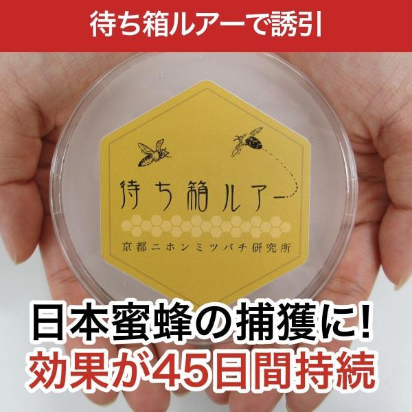 待ち箱ルアーで始める!週末養蜂スタートキット|syumatsu-yoho|03