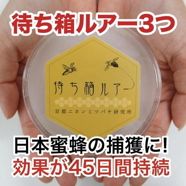 ニホンミツバチ誘引セット!待ち箱ルアー3つと蜜蝋80gのセット|syumatsu-yoho|02