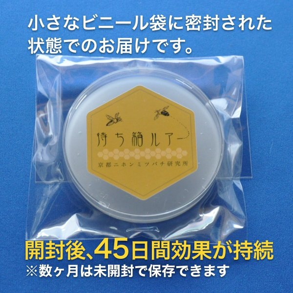 待ち箱ルアー(10個セット)|syumatsu-yoho|07