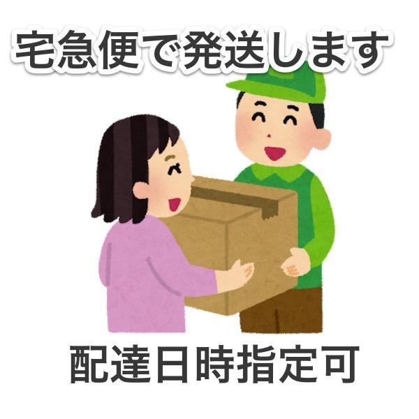 待ち箱ルアー(10個セット)|syumatsu-yoho|08