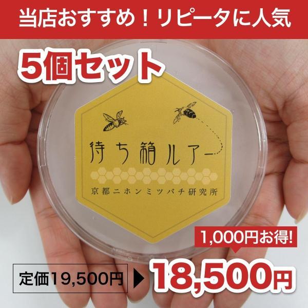 待ち箱ルアー(5個セット)|syumatsu-yoho