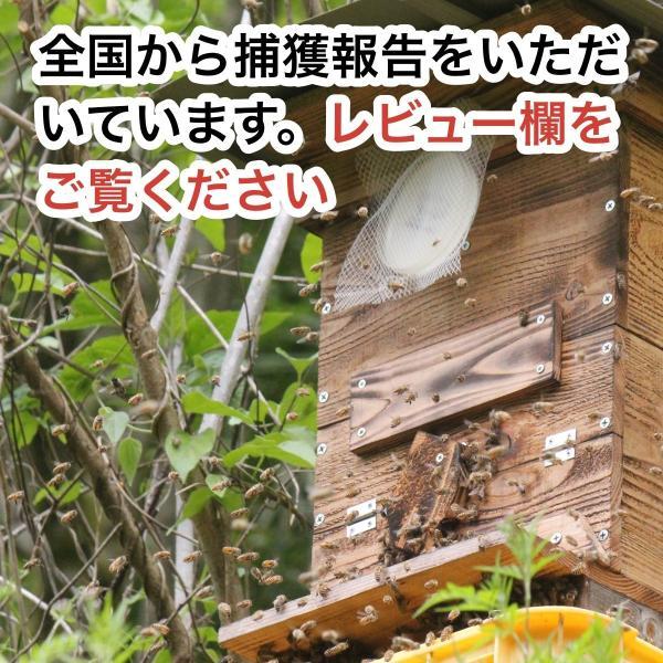待ち箱ルアー(5個セット)|syumatsu-yoho|02