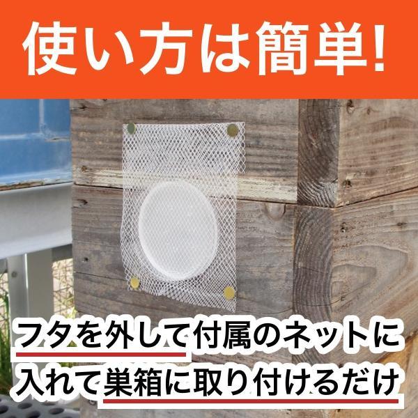 待ち箱ルアー(5個セット)|syumatsu-yoho|05
