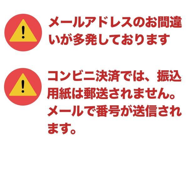 待ち箱ルアー(5個セット)|syumatsu-yoho|10
