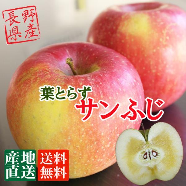 信州産 りんご 葉とらず サンふじ 大玉 約3kg(7-9玉) 送料無料 完熟 リンゴをお届けします。