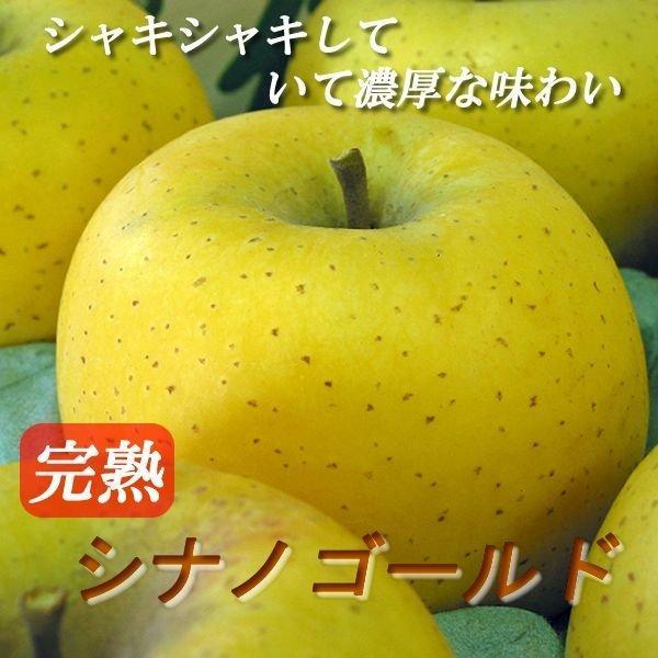 ≪今が旬≫長野県産 りんご シナノゴールド 10kg(24-36玉)送料無料でお届けします