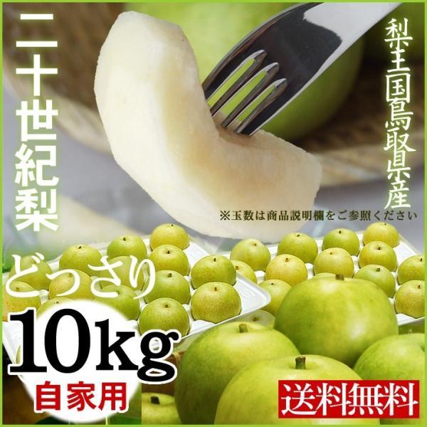 梨 20世紀梨 二十世紀梨 自家用 訳あり 10kgセット 送料無料  鳥取県産 5キロ×2箱の場合あり