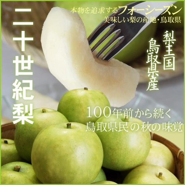 梨 20世紀梨 二十世紀梨 自家用 訳あり 5kgセット 送料無料 鳥取県産