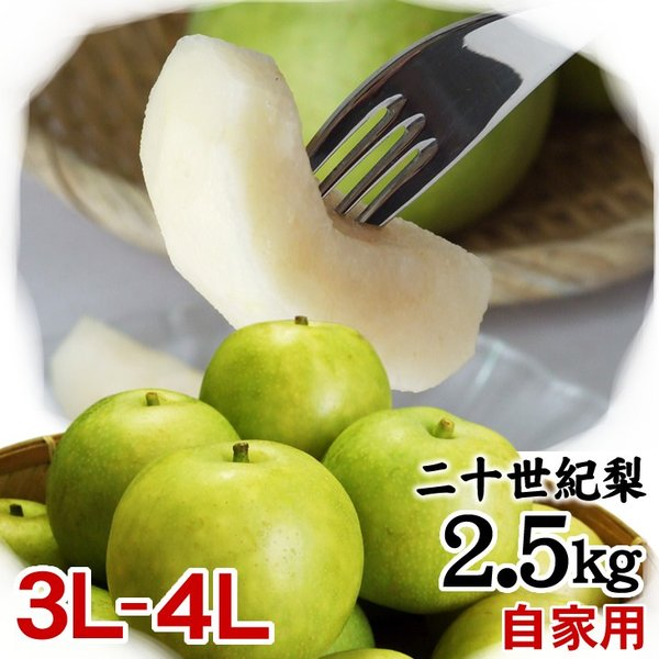 梨 20世紀梨 送料無料 二十世紀梨 鳥取県産 自家用 訳あり 2.5kgセット 大玉3L-4L 6-7玉入 常温