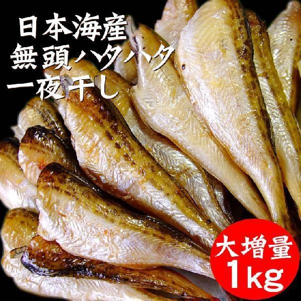 送料無料 ハタハタ 一夜干し 無頭 1kg  日本海産 冷凍 * ハタハタ はたはた 干しはたはた 干物