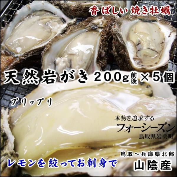 バーベキュー カキ お中元 ギフト 送料無料 山陰産 天然岩牡蠣 カキ 生 5個セット 約1kg 200g前後が5個入