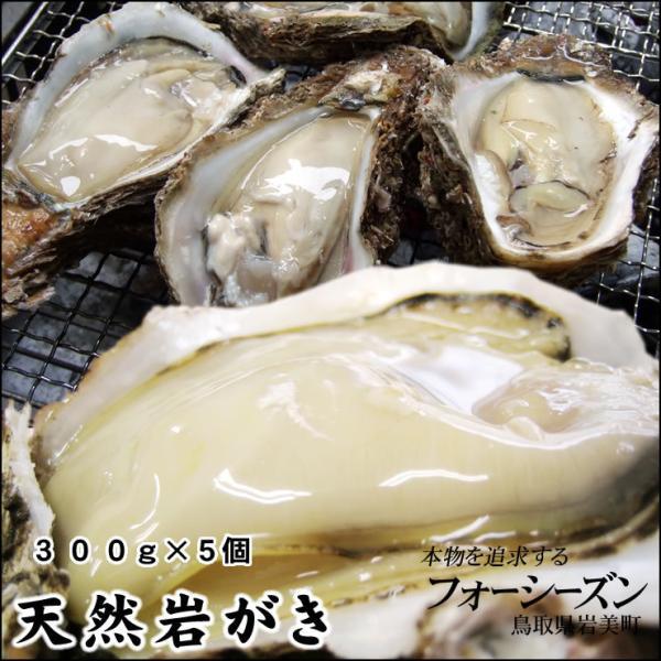 お中元 ギフト カキ イワガキ 岩ガキ 送料無料 山陰産 天然岩牡蠣 生 大 7個セット 300g前後が7個入 夏輝牡蠣
