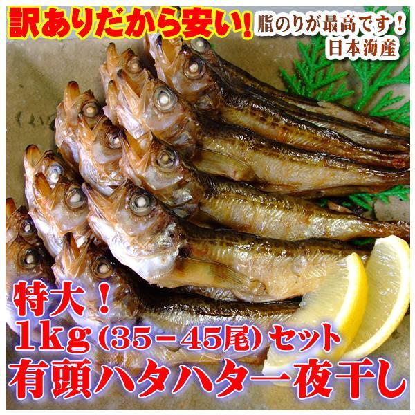 送料無料 ハタハタ 一夜干し 有頭 1kg  日本海産 冷凍* ハタハタ はたはた 干しはたは た 干物