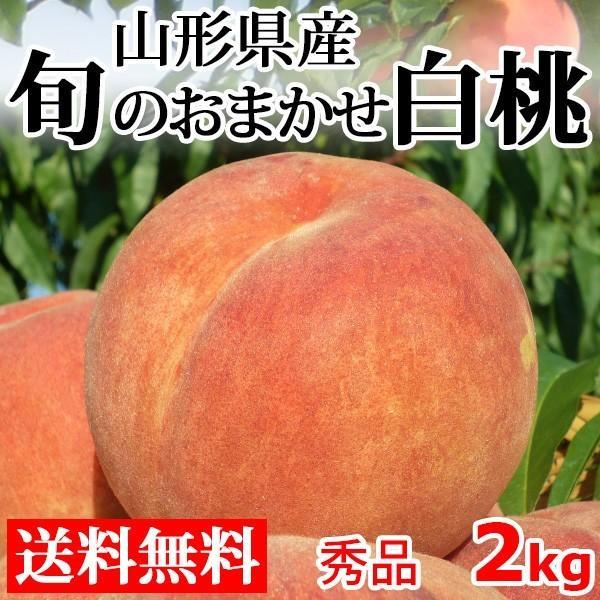 白桃 秀品 送料無料 旬のおまかせ 2kg 山形県産 桃 もも 産地直送|syun-syokutaku