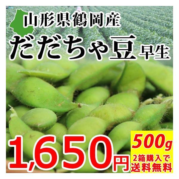 だだちゃ豆 500g 早生 山形県鶴岡産 産地直送|syunmi