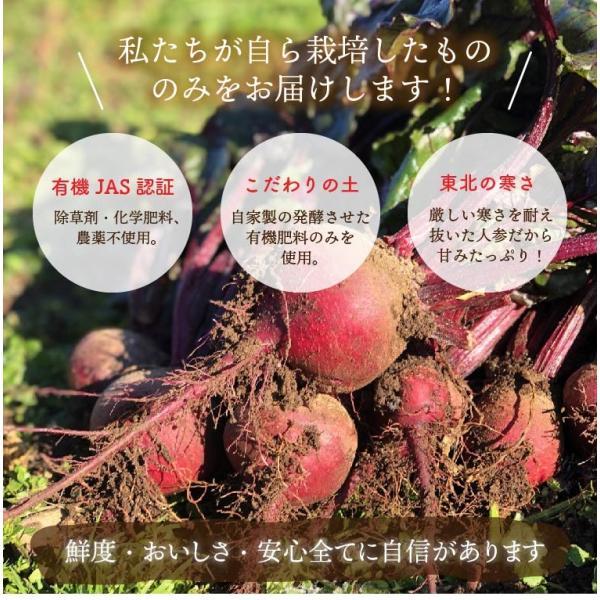 有機ビーツ 2kg オーガニック 有機栽培 有機野菜 野菜 化学肥料・農薬不使用 産地直送 送料無料|syunsaifarm|02