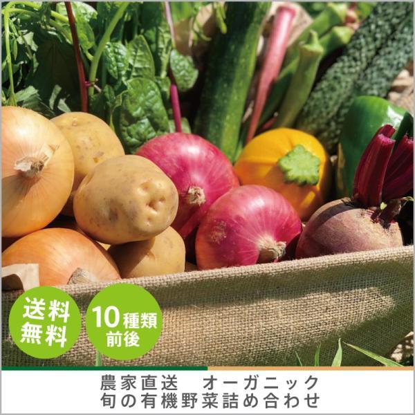 有機野菜詰め合わせ 10種類前後 おまかせ 野菜セット オーガニック 有機栽培 有機野菜 野菜 旬の野菜 産地直送 送料無料|syunsaifarm