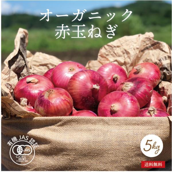 有機野菜 オーガニック 赤玉ねぎ 5kg 化学肥料・農薬不使用 農家直送 送料無料|syunsaifarm