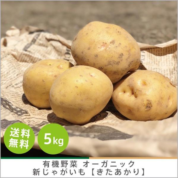 有機じゃがいも 【きたあかり】5kg オーガニック 有機栽培 有機野菜 野菜 化学肥料・農薬不使用 産地 直送 送料無料 syunsaifarm
