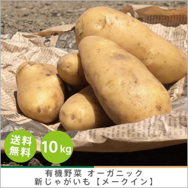 有機じゃがいも 【メークイン】10kg オーガニック 有機栽培 有機野菜 野菜 化学肥料・農薬不使用 産地 直送 送料無料|syunsaifarm