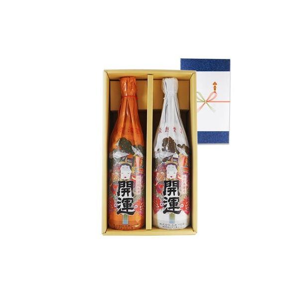 御中元 お中元 ギフト 日本酒 開運紅白2本セット 特別純米 特別本醸造 1800ml 送料無料 静岡県 土井酒造場