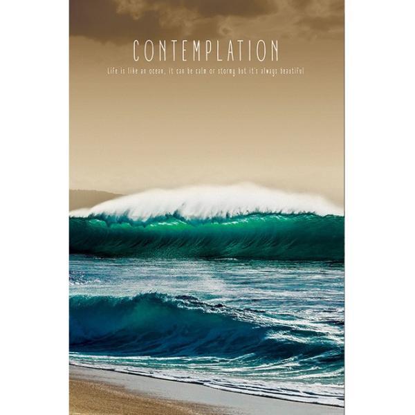 『コンテンプレーション Contemplation 』ポスター サイズ91.5×61cm|t-home