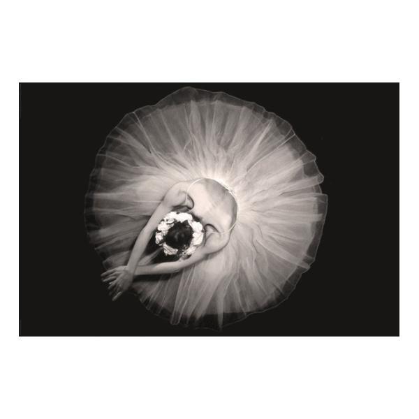 『バレリーナ Ballerina 』ポスター サイズ91.5×61cm|t-home