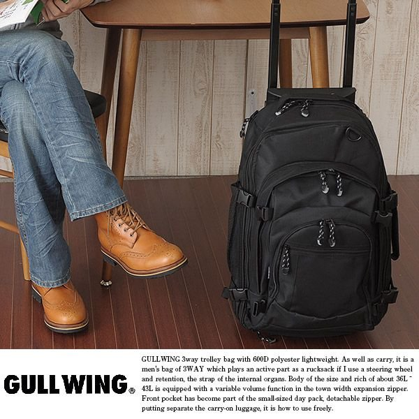3wayキャリーバッグ 36〜43L 機内持ち込み 小型 リュック GULLWING|t-style