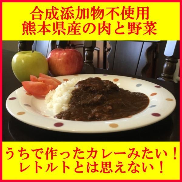 レトルトカレー 高級 手土産 ご当地 うちのカレー 無添加 熊本県産の豚肉と野菜 安心 安全 ポーク ポイント消化 九州産 国産 ネコポス配送4個まで|taberu-kumamoto