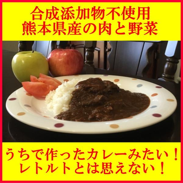 うちのカレー レトルトカレー 高級 手土産 ご当地  無添加 熊本県産豚肉と野菜 ポーク ポイント消化 九州産 お試し2袋セット|taberu-kumamoto