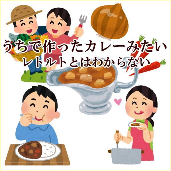 うちのカレー レトルトカレー 高級 手土産 ご当地  無添加 熊本県産豚肉と野菜 ポーク ポイント消化 九州産 お試し2袋セット|taberu-kumamoto|02