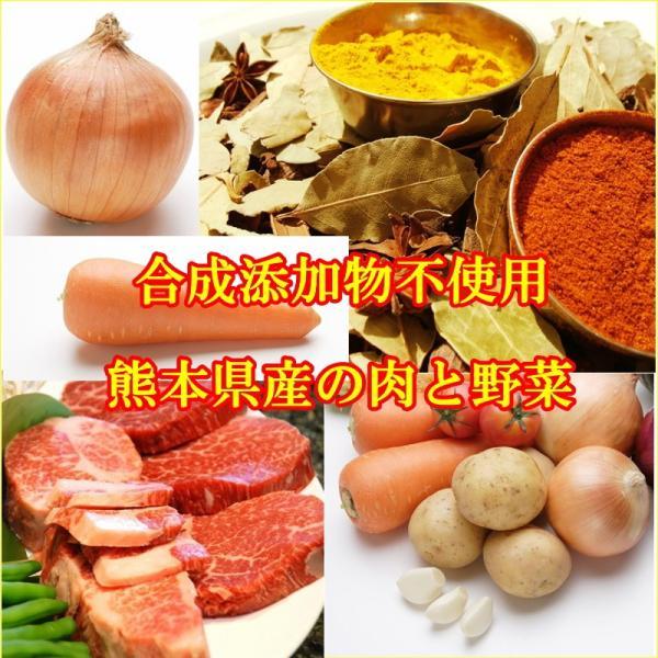 うちのカレー レトルトカレー 高級 手土産 ご当地  無添加 熊本県産豚肉と野菜 ポーク ポイント消化 九州産 お試し2袋セット|taberu-kumamoto|04