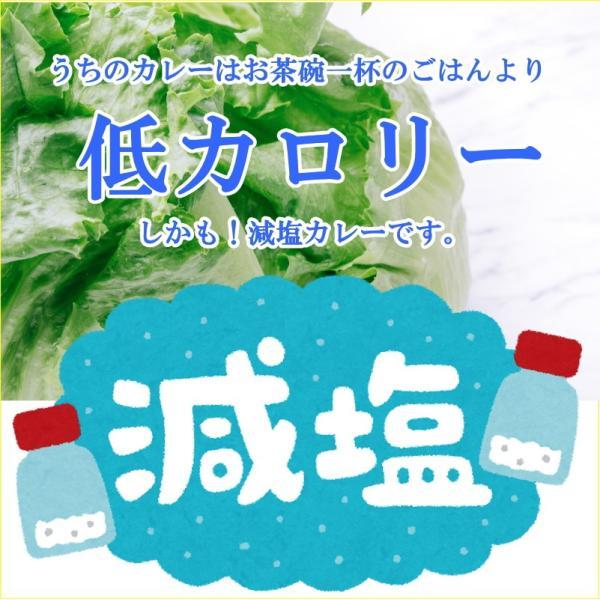 うちのカレー レトルトカレー 高級 手土産 ご当地  無添加 熊本県産豚肉と野菜 ポーク ポイント消化 九州産 お試し2袋セット|taberu-kumamoto|06