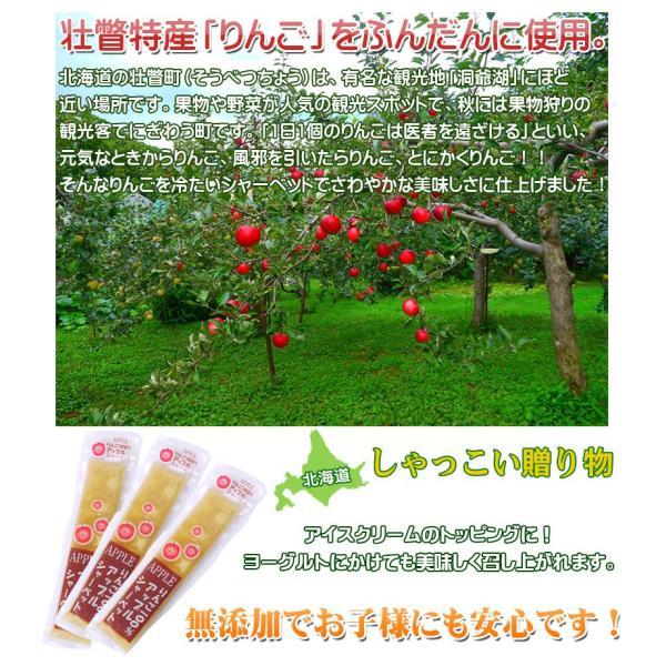 アップルシャーベット 50ml 10本 tabiyoka 03