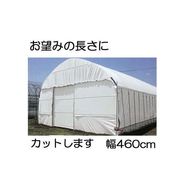 農POフィルム ハクリョク 厚み0.15mm×幅460cm×長さ30m 30m価格 両面仕様 (白・緑) 農業用倉庫 三菱ケミカルアグリドリーム