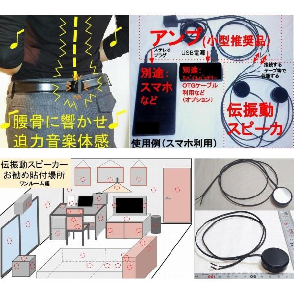 超小型アンプ 3W×2ch ステレオプラグアンプ USBコネクタ電源 BOX状版|tafuon|03