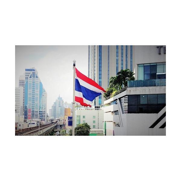 ステッカー タイ 雑貨 アジアン シール / タイ 王室 ステッカー プミポン 国王 (ラーマ 9世) 肖像 + 国旗 Sサイズ l-A / おみやげ|taikokuya|12