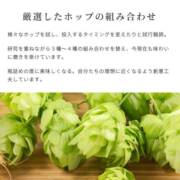 クラフトビール 地ビール 吟米麦酒(ギンマイビール) 吟米WHITE 330ml 新潟産 コシヒカリ tainaibeer 06