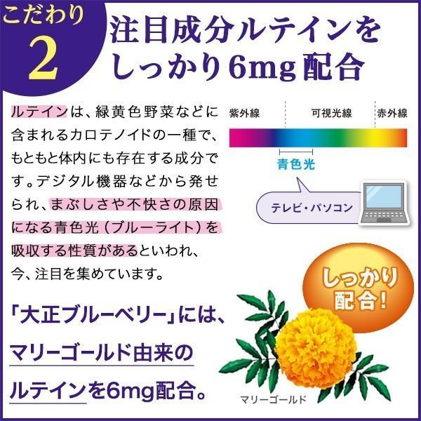 ブルーベリー サプリメント ルテイン 大正ブルーベリー 3箱 90袋 10%OFF ビルベリー 大正製薬 送料無料|taisho-directshop|05