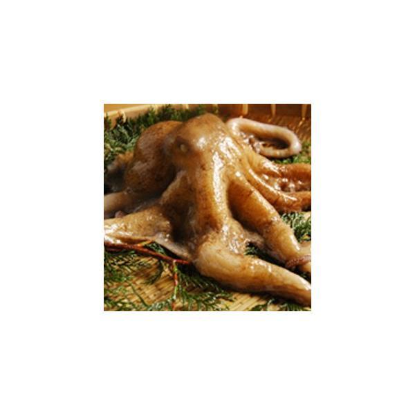 広島産 生真たこ 1.5kg( タコ 蛸 生 刺身 しゃぶしゃぶ )