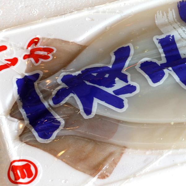 送料無料 いか 一夜干し Mサイズ( 冷凍 )10枚 レシピ 付き( イカ 干物 烏賊 真いか )