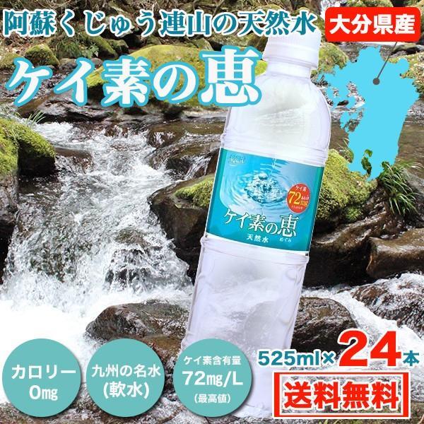 【次回出荷9月18日】シリカ水 500ml 24本 ケイ素水 ケイ素の恵 高濃度シリカ水 ミネラルウォーター ケイ素水 天然水 シリカウォーター 水 軟水 大分県産 国産|taiyouno-lemon