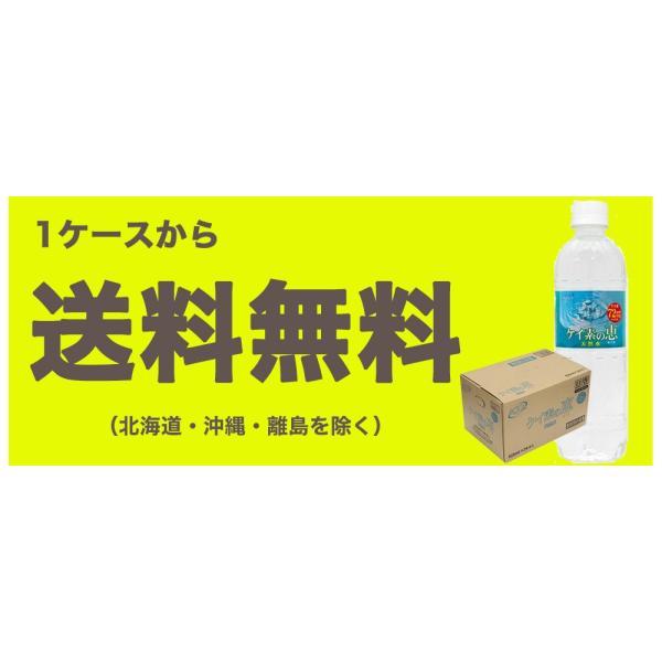 【次回出荷9月18日】シリカ水 500ml 24本 ケイ素水 ケイ素の恵 高濃度シリカ水 ミネラルウォーター ケイ素水 天然水 シリカウォーター 水 軟水 大分県産 国産|taiyouno-lemon|10
