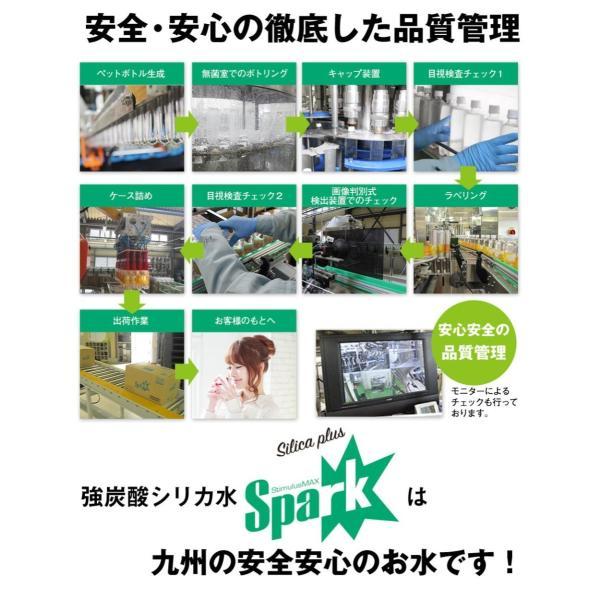 炭酸水 500ml 48本 最安値 強炭酸水 SPARK スパーク まとめ買い 九州産 国産 大分県産 発泡水 スパークリングウォーター|taiyouno-lemon|15