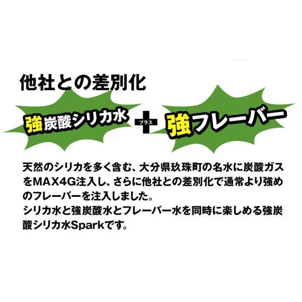 炭酸水 500ml 48本 最安値 強炭酸水 SPARK スパーク まとめ買い 九州産 国産 大分県産 発泡水 スパークリングウォーター|taiyouno-lemon|07