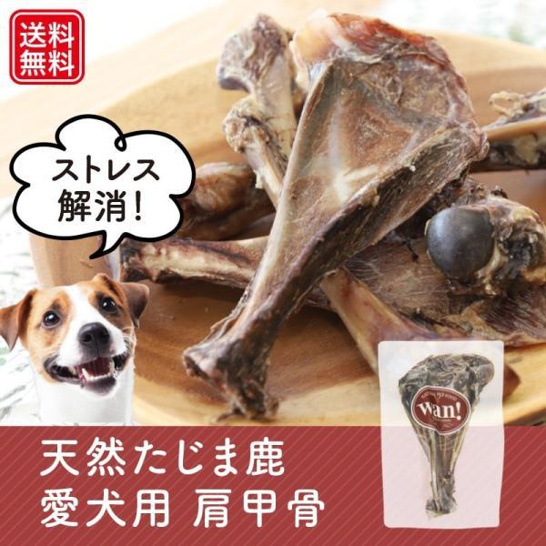 Mサイズ(長さ約16〜18cm) 愛犬用鹿の肩甲骨 無添加  兵庫県但馬産本州鹿|tajimart