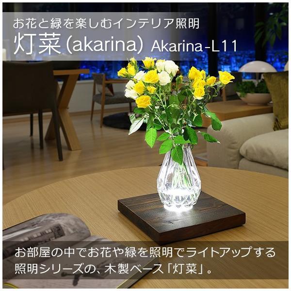お花と緑を楽しむインテリア照明 Akarina-L11 (木目調) (MAI11)