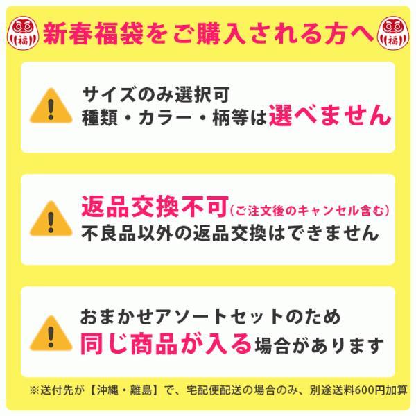 2019年新春福袋 シルク100%ショーツ&インナー5点セット 送料無料 takagi-bodyhints 04